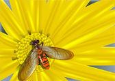 Flor amarilla y mosca de color — Vector de stock
