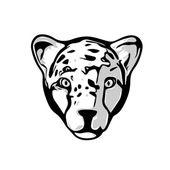 Head of Cheetah — Stock Vector