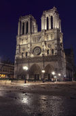 Notre Dame de Paris at night — Stock Photo