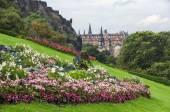 Flowers of Edinburgh castle — Stock Photo