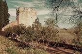 Cordoba city wall, Andalusia — Fotografia Stock