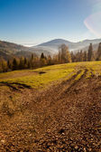 Vackra berg skog Höstlandskap — Stockfoto