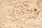 Wall limestone — Stock Photo