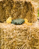 Hay bales with gourds display — Stock Photo