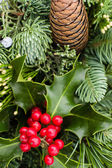 Arrangement of evergreen boughs with holly — Stock Photo