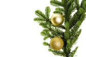 Noble fir bough with gold ornaments — Stock Photo