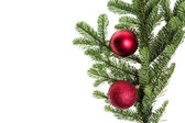 Green fir bough with red ornaments — Stock Photo