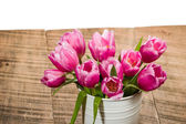 Fresh pink tulips in a white can — Stock Photo
