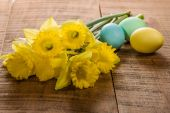 Daffodils and dyed Easter eggs — Stock Photo