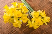Bouquet of yellow daffodil flowers — Stock Photo