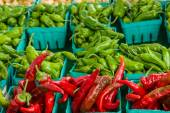 Boxes of red and green hot peppers — Stock Photo