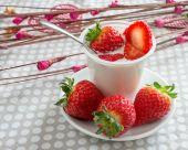 Yogurt with strawberries — Stock Photo
