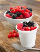 Yougurt with wild berries — Stock Photo