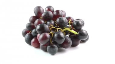 Black grapes on white background — Stock Video