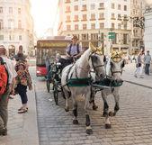 Horse carriage in Vienna - Austria — Stock Photo