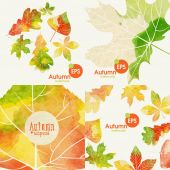 Autumnal Background Set — Stock Vector