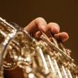 The fingers of the musician playing the French horn — Stock Photo #77043749