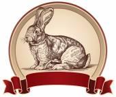 Bir çerçeve içinde bir tavşan resmi — Stok Vektör