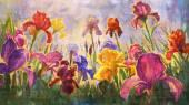 Irises - imitation of oil on canvas. — Stock Photo