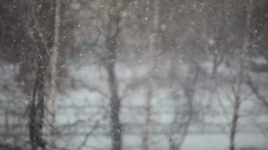 View of snowing in the town — Stock Video