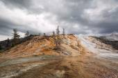 Mineral deposits at Yellowstone  — Stock Photo