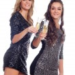 Friends toasting with champagne — Stock Photo #56826599