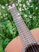 Classical guitar on the grass — Stock Photo