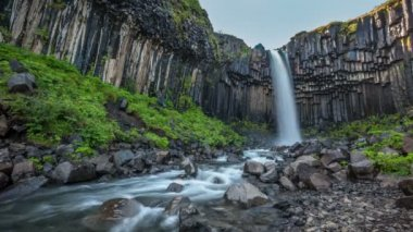 Svartifoss, Black Waterfall, Iceland — Stock Video
