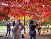 Japanese tourists taking pictures — Stockfoto