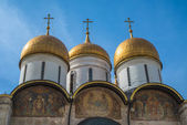 The Cathedral of the Dormition — Foto Stock