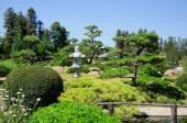 Beautiful view of Japanese Garden — Stok fotoğraf