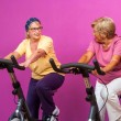 Happy senior ladies in gym. — Stock Photo #55147019