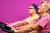 Senoir women working out on bicycles in gym — Stock Photo