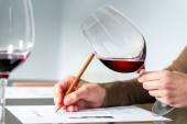 Sommelier evaluating red wine. — Stock Photo