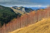 Autumn scenery in rural area in the mountains — Stock Photo