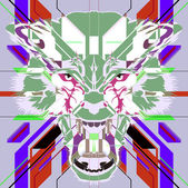 Angry wolf head — Stock Photo