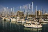 Port with yachts for rent. — Foto de Stock