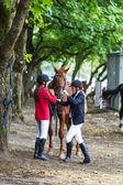 девочки наездники и лошади. — Стоковое фото