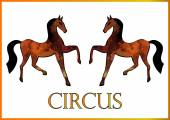 Two browm circus horses — Stock Vector