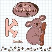 Alphabet with  koala — Stock Vector
