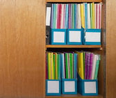 Colour file folders in office cupboard — Stock Photo