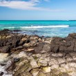 Galapagos Sea View — Stock Photo #69502961