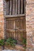 Ancient wooden door with plants — Stock Photo
