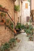 Quiet street with flowers (Spello, Italy) — Stock Photo
