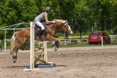 Side view of horsewoman jumping — Stock Photo