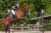 Side view of horsewoman jumping a brown horse — Stock Photo