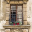 Detail of medieval window — Stock Photo #76008665