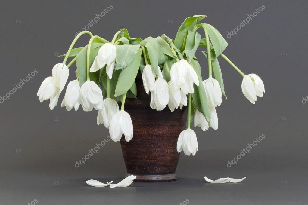 vase rempli de fleurs tombantes et morts photographie michaklootwijk 106143188. Black Bedroom Furniture Sets. Home Design Ideas