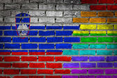Dark brick wall - LGBT rights - Slovenia — Stock Photo