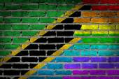 Dark brick wall - LGBT rights - Tanzania — Stock Photo